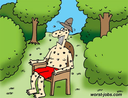 mosquito-researcher-insect-photo-cartoon